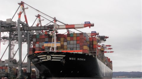 MSC Sonia served by six Ship to Shore cranes in Contship La Spezia