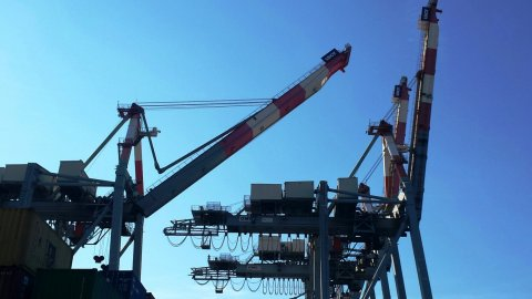 Cranes Progress Report LSCT
