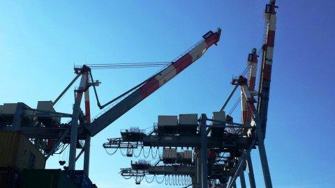 Cranes Progress Report LSCT