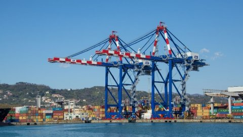 New 23 rows STS cranes at LSCT