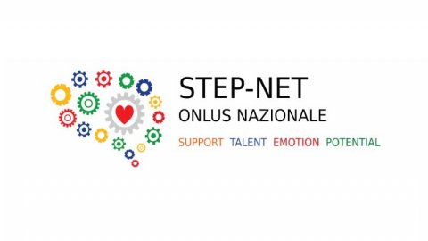 Step-net banner