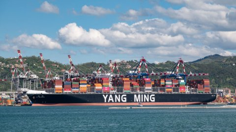 Yang Ming Wellspring at La Spezia Container Terminal